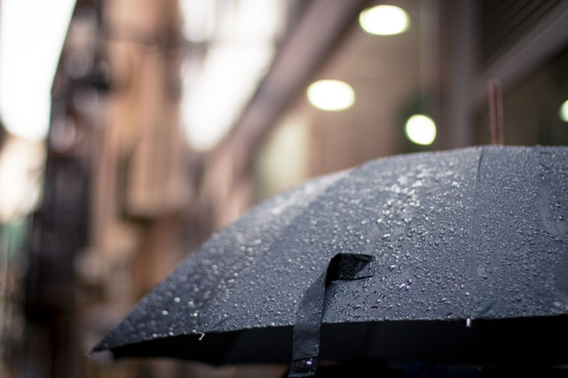 Daily Haiku: Rain